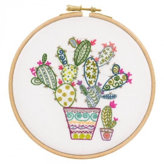Ein hübscher Kaktus mit bunten Blüten l Stickpackung über Zur Lila Pampelmuse