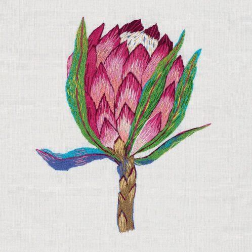 moderne Protea in Pink sticken | über Zur Lila Pampelmuse